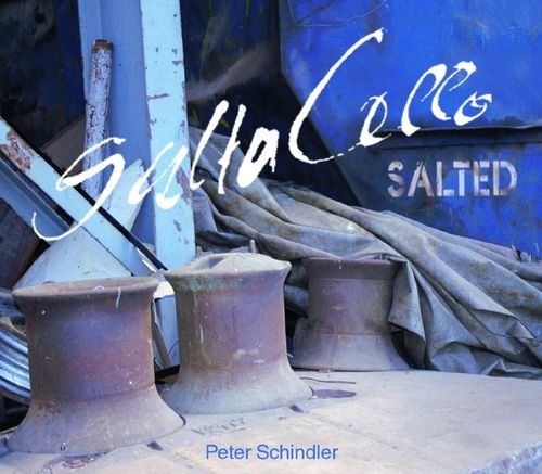 [중고] Saltacello / Salted - Peter Schindler (CD)